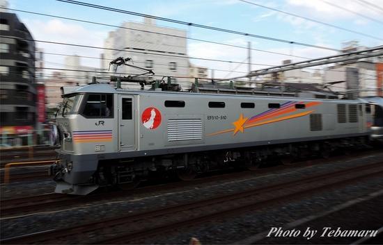 DSCN8367s.jpg