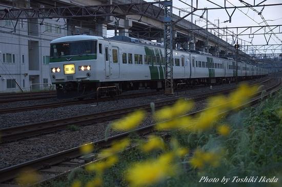 IMGP4705a.jpg