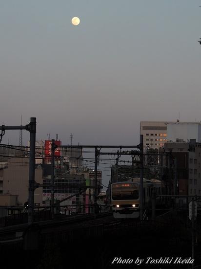 Dscn9559a.jpg