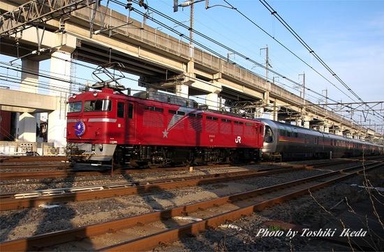 IMGP2655s.jpg