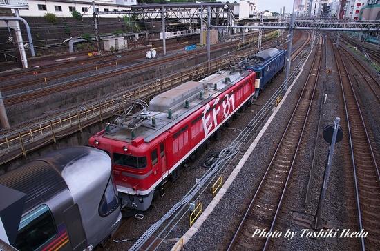 IMGP5678a.jpg