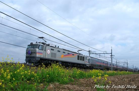 IMGP6508s.jpg