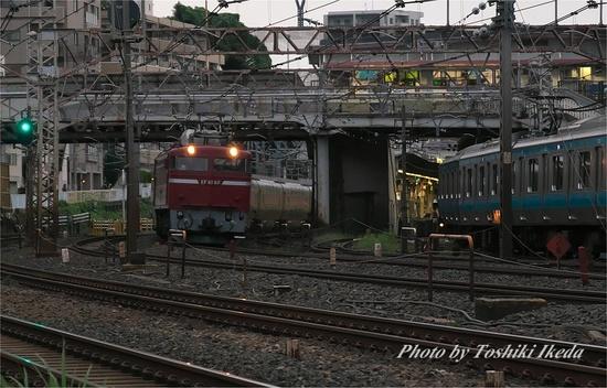 IMGP7169s.jpg